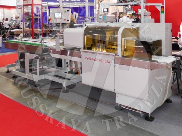 Упакковочная машна РТ-УМ-ГШ-С12 BOX MOTION для упаковки продуктов неправильной формы и рыхлой структуры